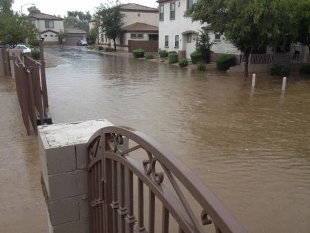 Standing rain water of monsoon season in gated housing community, Phoenix, AZ