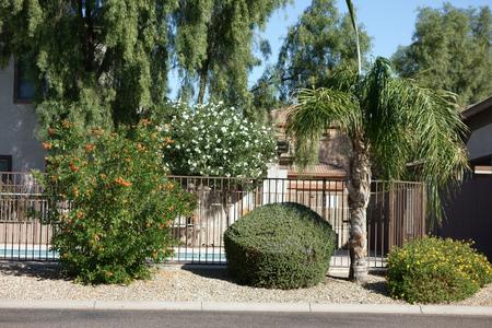 frontyard: Arizona Desert Style Front Yard in Phoenix