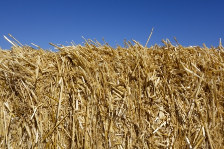 colo: Golden Hay Stack Topped by Clear Blue Sky