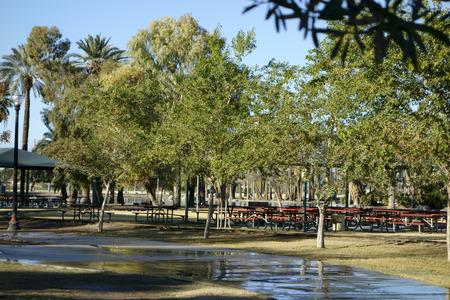 Meeting Area in Encanto Park; Phoenix, Arizona
