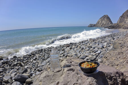 thornhill: Chicken with veggie bowl and soft drink at Thornhill Beach near Point Mugu, Ventura, CA (focus on the bowl)