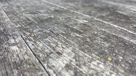 shallow depth of field: Acute angle shot of exposed to elements grainy natural wood surface, extremely shallow depth of field