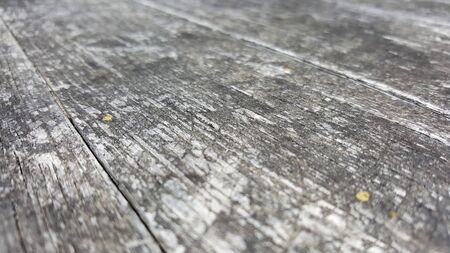 acute angle: Disparo sin �ngulo de exposici�n a los elementos de superficie de madera natural granulada, profundidad muy poca profundidad de campo