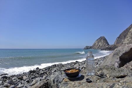 thornhill: Bowl with veggie chicken and soft drink bottle at Thornhill beach near Point Mugu Ventura CA focus on food