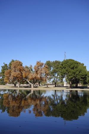 phoenicians: Popular recreational and holiday spot for Phoenicians at Cortez lake in a small recreational park of North West Metro Phoenix on New Year Day Stock Photo