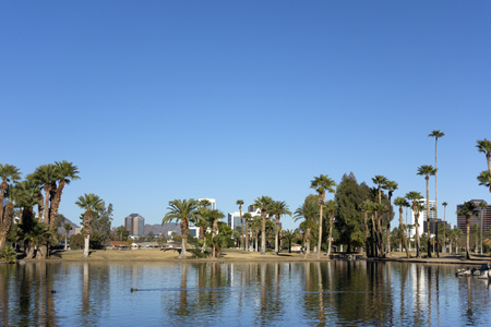 uptown: Bright blue winter sky on the lake in Encanto park located right in downtown of Phoenix, Arizona; Copyspace