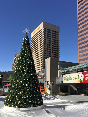 goldish: PHOENIX, AZ -  NOVEMBER 17, 2016: White reflective tarp covering downtown city skating ring with decorated Christmas tree in sunny Phoenix, Arizona