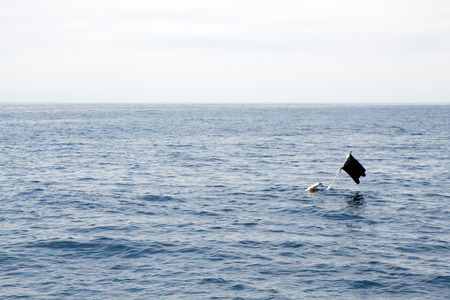 Black piece of cloth or similar material attached to a pole sticking out of a submerged floating container and used as a marker or buoy in open sea that can be found off the coast of Ventura county, California Stock Photo