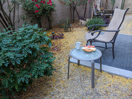 Outdoor breakfast in Arizona desert style xeriscaped backyard with crisp fresh air in early Spring morning Zdjęcie Seryjne - 104766633
