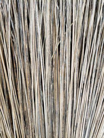 Weathered Broom Natural Background Zdjęcie Seryjne