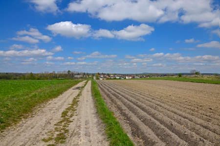 sandy soil: A country road among the fields with a view to a disant village, blue sky with scattered clouds in the background Stock Photo