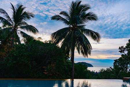 Beautiful tropical sunset sky with palm trees and pool Standard-Bild