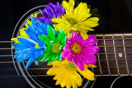 Closeup of a black acoustic guitar with bright multicolored daisies coming out of center