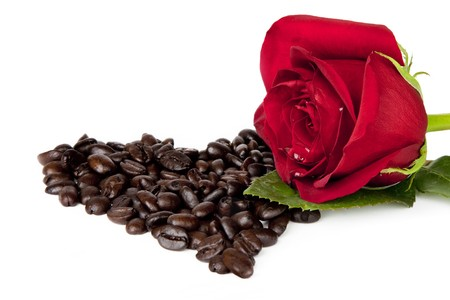 Single red rose loaded with dew drops, resting on a bed of coffee beans in the shape of a heart, isoloated on white background