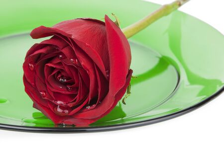 A single romantic red rose loaded with large droplets of water rests on a clear green glass plate on white background. Stock Photo