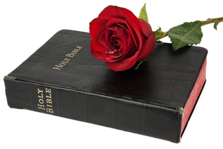 Beautiful red rose resting on the cover of an old bible, isolated on white photo