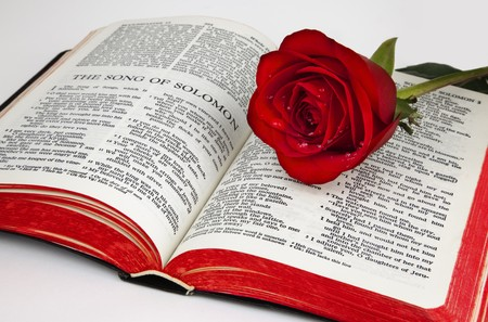 A single red rose rests upon the pages of an old bible open to the romantic chapter,  Foto de archivo