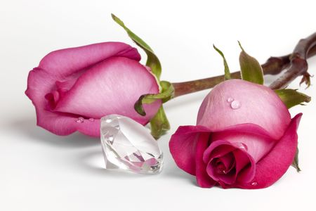 Two fresh pink roses with dew drops lying on field of white next to a large clear diamond-shaped crystal