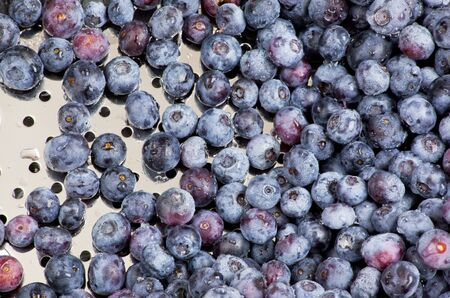 Closeup of freshly washed blueberries in a silver colander Stock Photo