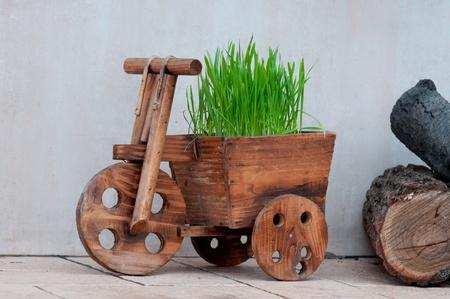 carretilla de mano: Pequeño carro de madera con la hierba
