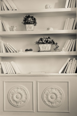 White bookshelf with white books, porcelain figures and plants photo