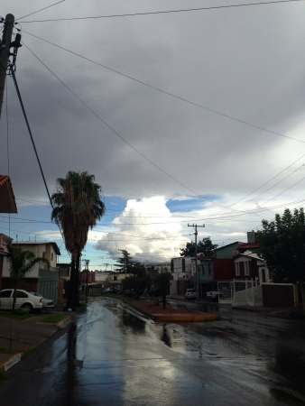 Raining in Chihuahua  Stock fotó
