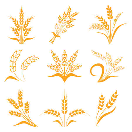Symbols for design wheat