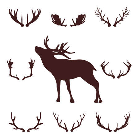 horny: Deer head silhouette with antlers, vector illustration on a white background.