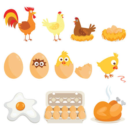 Set of farm animals, vector stickers with chicken family on white isolated background.