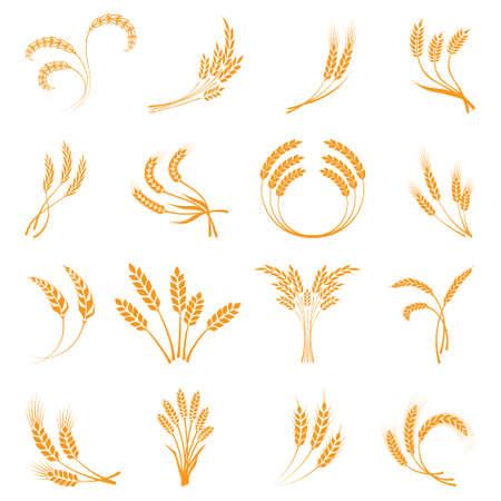 Symbols. for logo design Wheat. Agriculture, corn, barley, stalks, organic plants, bread, food, natural harvest, vector illustration on white background Illustration