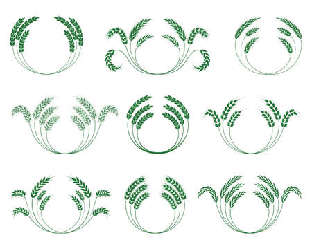wheaten: Set of wheaten wreaths on a white background. Vector.