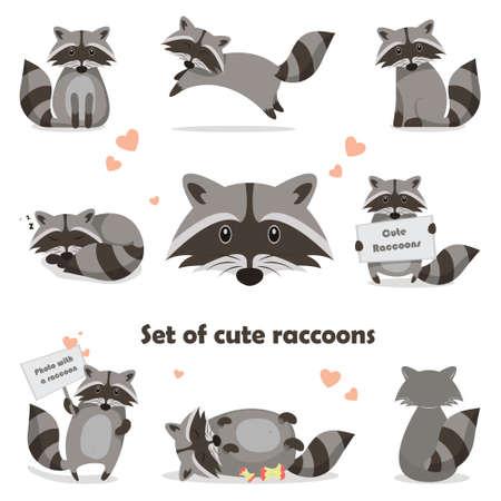 Collection isolated funny raccoon. Emotion little raccoon. Vector set cute raccoon. Cartoon raccoon in children style. Vettoriali