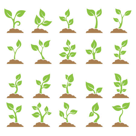 Set of planted seedlings in the ground. Icons  Vector illustration on white background