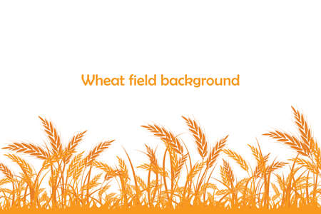 Vector silhouette of wheat. Wheat in the field on a white background