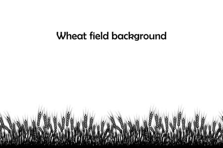 Vector silhouette of wheat. Wheat in the field on a white background. Stockfoto - 116185814