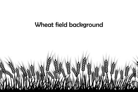 Vector silhouette of wheat. Wheat in the field on a white background.