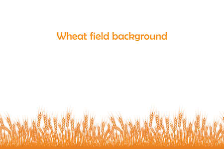 Vector silhouette of wheat. Wheat in the field on a white background Stockfoto - 121910177