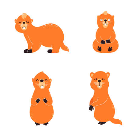 Baibac, set hand drawn collection on a white background. Vector illustration. Creative groundhog, young baibak