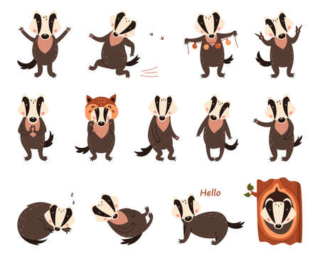 Set of cartoon badgers. Vector illustration on white isolated background for print design Illustration