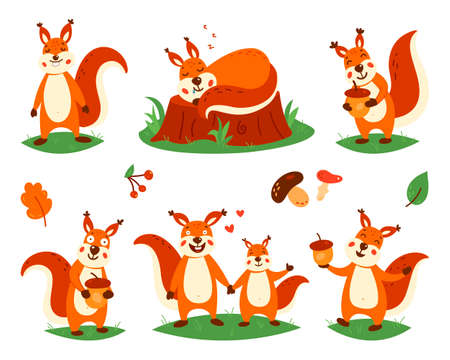 Cartoon cute squirrels. Little funny squirrels. Vector illustration on a white isolated background.