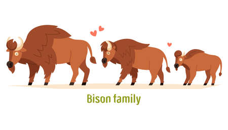 Bison family Mom, dad and calf. Flat vector illustration isolated on white background. Childrens illustrations 向量圖像