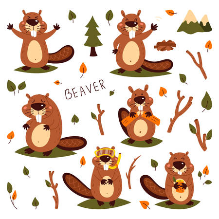 Set of cute beavers. Sticker. Childrens, funny. Cartoon comic book style vector illustration of forest wild animals 向量圖像