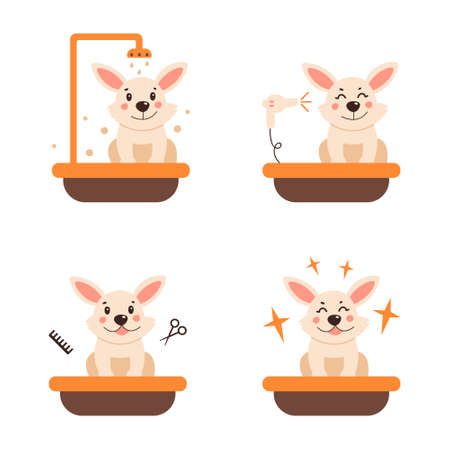 Bath for a cute dog. A dog is swimming. Vector illustration on a white isolated background. Icon set.