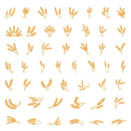 Symbols. for logo design Wheat. Agriculture, corn, barley, stalks, organic plants, bread, food natural harvest vector illustration on white background isolated