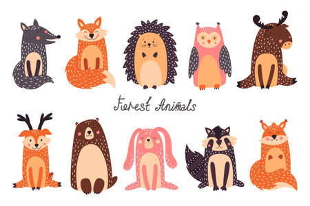 Cute Woodland Animals and Forest Design Elements Vector