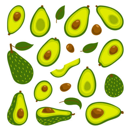 Cooking with avocados vector illustration set. Whole avocado and cut slices isolated on white background