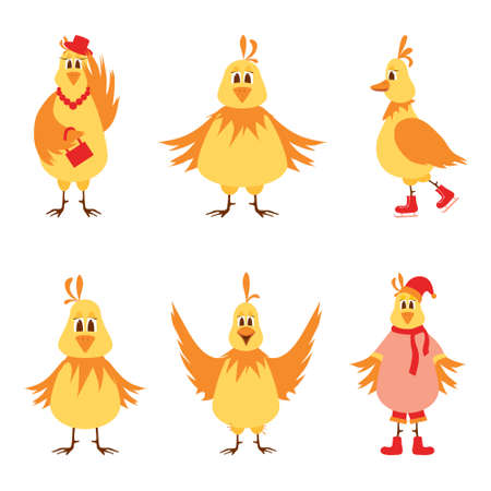 Illustration of six laying hens on a white background. Vector illustration Ilustrace