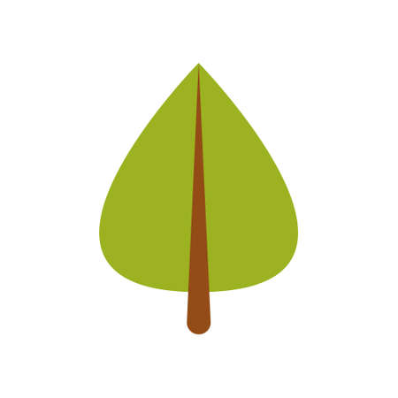 Green leaf of a tree. Vector illustration on white isolated background Ilustrace