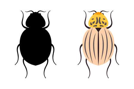 Colorado potato beetle - vector illustration isolated on white background