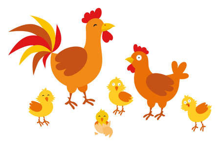 Adult hen and rooster with chickens on a white background. Cute chicken family with their chickens in cartoon style Ilustrace